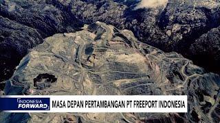 Download Masa Depan Pertambangan PT Freeport Indonesia Video