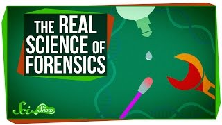 Download The Real Science of Forensics Video
