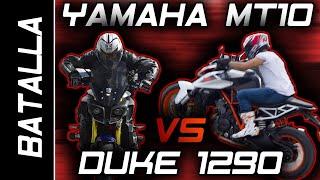 Download MT10 VS SUPER DUKE 1290   DRAG RACE #FULLGASS Video