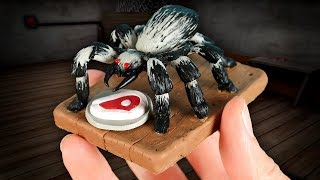 Download Making GRANNY'S PET SPIDER in POLYMER CLAY!🕷 Video