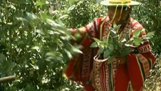 Download The Andean Cosmovision of the Kallawaya Video