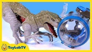 Download Jurassic World Toys Indominus Rex vs Ankylosaurus Play Set & Play Doh Surprise Dinosaur Eggs Video