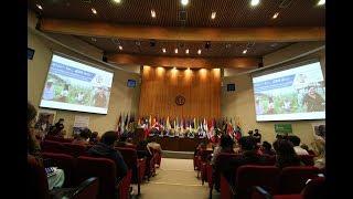 Download Foro Sociedades Rurales en América Latina y el Caribe y la Agenda 2030 Video