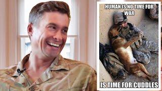 Download British Army Major Reviews Dank Military Memes Video