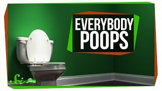 Download Everything You Ever Wanted to Know About Poop Video