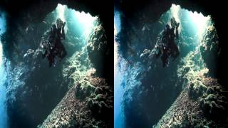 Download Giants of the Sea 3D Movie Trailer Stereoscopic Video