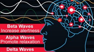 Download Types of Brain Waves and Their Functions Video