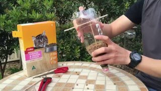Download Cat Feeder - DIY Self feeding cat food dispenser Video