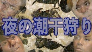 Download 【夜の潮干狩り】所持金0円で釣り生活 11話【伊是名島編】 Video