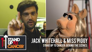 Download Stand Up To Cancer 2018: Behind The Scenes | Jack Whitehall & Miss Piggy Video