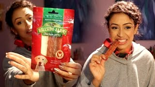 Download EATING DOG FOOD!! DOLLA STORE HAUL! Video