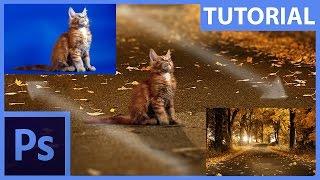 Download Základy fotomanipulace – maskování a retuše – Photoshop CZ tutorial Video