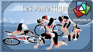 Download The Tour De France Explained in Animation Video