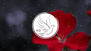 Download NF-Warm Up (Instrumental) Video