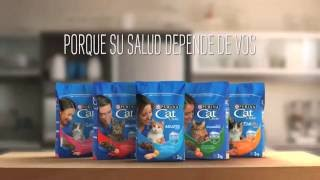 Download Nuevo Purina Cat Chow con Defense Plus - Peso Saludable Video
