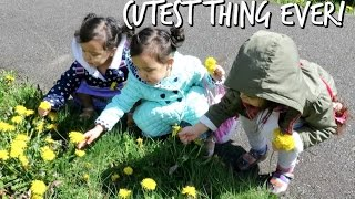 Download THE CUTEST THING EVER! - April 13, 2017 - ItsJudysLife Vlogs Video