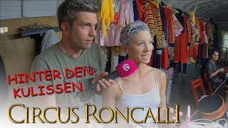 Download Hinter den Kulissen im Circus Roncalli Video