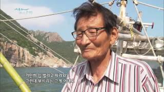 Download [어영차바다야 제철수산물] 여름바다 대물 '부시리', 방어와 부시리 구분법 Video