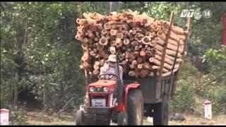 Download VTC14 Đắk Lắk: Người lái công nông được đào tạo GPLX hạng A4 miễn phí Video
