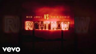 Download Nick Jonas, Robin Schulz - Right Now Video