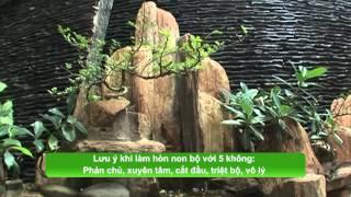 Download Thiết kế hòn non bộ trong nhà - Thành Phố Hôm Nay [HTV9 – 26.01.2015] Video