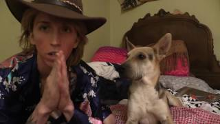 Download Canine 101: What happened when Lorne attacked me? LIVE video chat (UNEDITED) Video