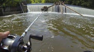 Download Post Storm Patapsco River Fishing Video