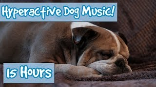 Download How to Calm a Hyperactive Dog! Music to Reduce Stress, Anxiety and Calm Destructive Dogs and Puppies Video