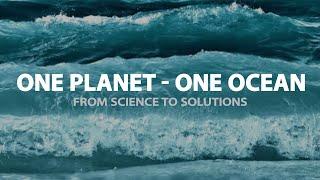 Download OceanMOOC | 3.3 | The Ocean's Biological Pump Video