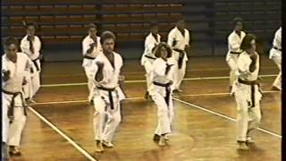 Download Estágio de Karate/Kobudo com Elmano Jorge Caleiro, Kenyu Chinen e Juan Bish Lorenzo (1992) Video