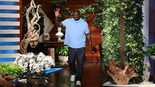 Download Shaq's Babysitting Gig Led to His Google Riches Video