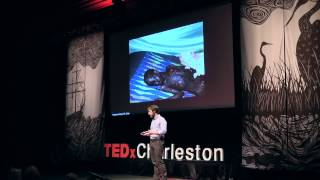 Download I would rather have HIV than a broken leg: Edward O'Bryan at TEDxCharleston Video