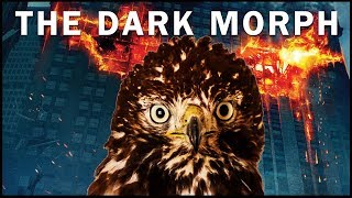 Download The Dark Morph Red Tailed Hawk | Rescue, Recovery and Back to the Wild! Video