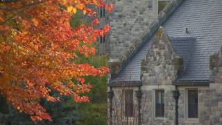 Download Virginia Tech: Fall Color Video