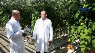 Download Akademia Farmera - Uprawiamy Biznes, odc. 1 Video