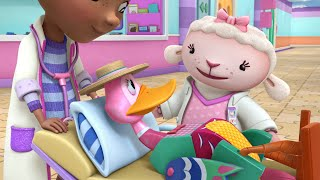 Download Toy Hospital: The Emergency Plan / What a Quack Video