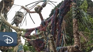 Download 'Placemaking' Pandora - The World of Avatar | Disney's Animal Kingdom Video