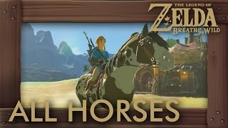 Download Zelda Breath of the Wild - All Horses Video