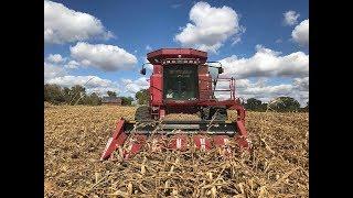 Download Harvesting Tornado Corn Video