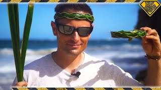 Download How To Make A Palm Leaf Headband Video