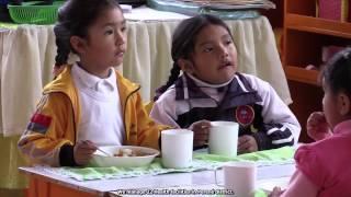 Download Escuelas Sostenibles: proyecto piloto Distrito Perené – Provincia de Chanchamayo – Región de Junin Video