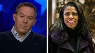 Download Gutfeld on Omarosa 'firing' madness Video