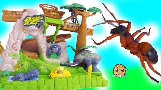 Download My Mini Mixie Q's Ride Shopkins Cutie Car In Jungle ! Cookie Swirl C Video Video