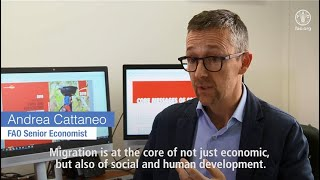 Download Make Migration work for all - FAO Senior Economist Andrea Cattaneo Video