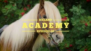 Download A Beginners Guide to Sagas and Horses | Iceland Academy Video
