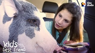 Download Girl's BFFs Are Two Pigs — Who Act Just Like Dogs | The Dodo Kid's Best Friend Video