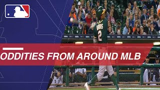 Download MLB Oddities of the Week Video