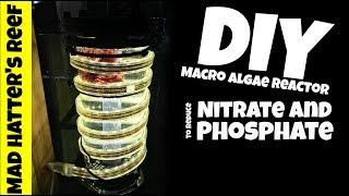 Download DIY Macro Algae Reactor to Reduce Nitrate and Phosphate Video