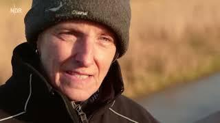 Download Winter an der Westküste | die nordstory | NDR Video