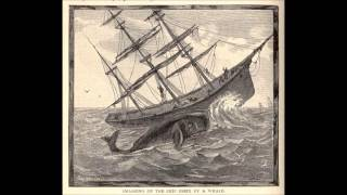 Download Wreck of the Whale Ship Essex Video